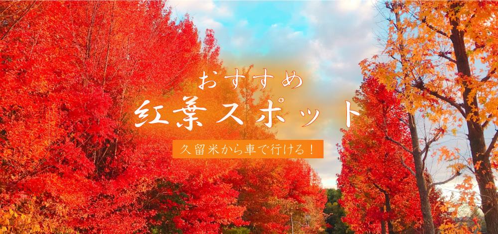 【特集】久留米市周辺のおすすめ紅葉スポット2019