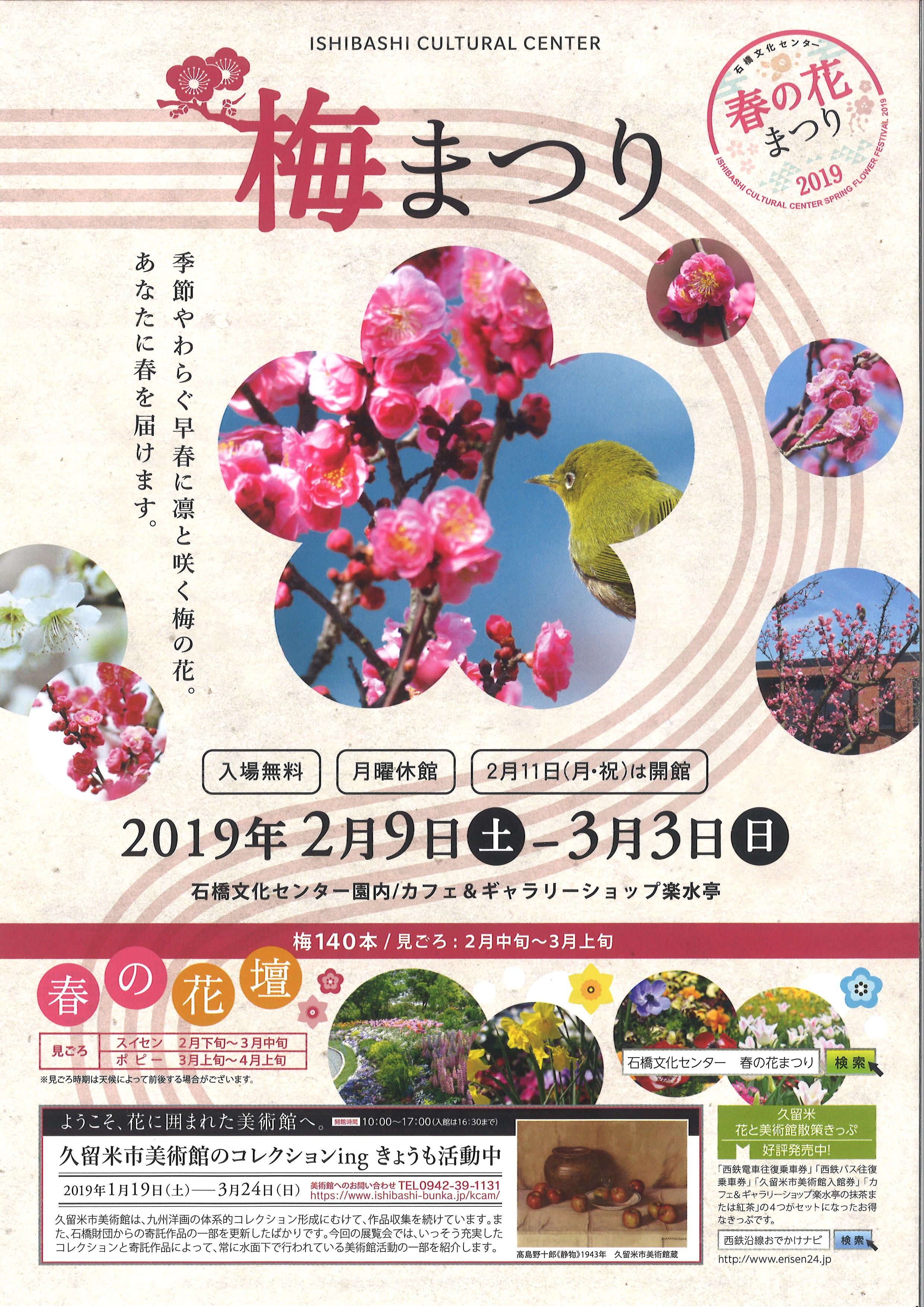 【春の花まつり2019 梅まつり】2月中旬から約140本の梅が見頃を迎えます