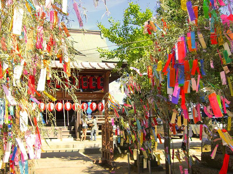【七夕神社の夏祭り】子供神輿や獅子が各氏子宅を回る伝統行事 様々なステージイベントも開催